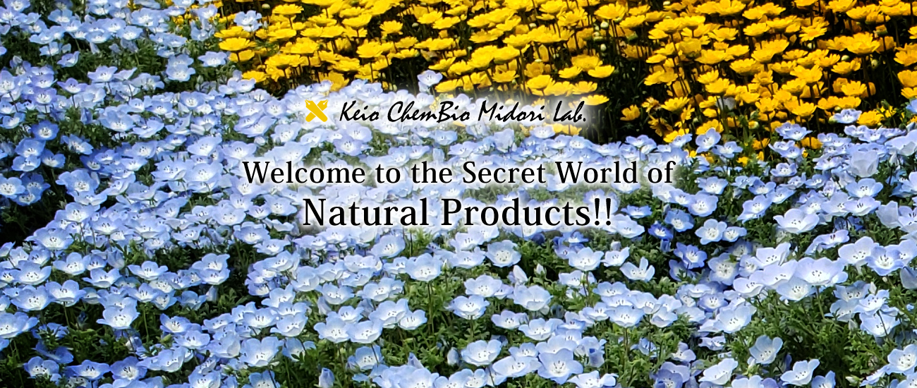 Welcome to the Secret World of Natural Products!!